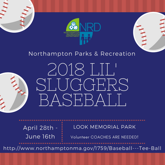 2018-lil-sluggers-baseball