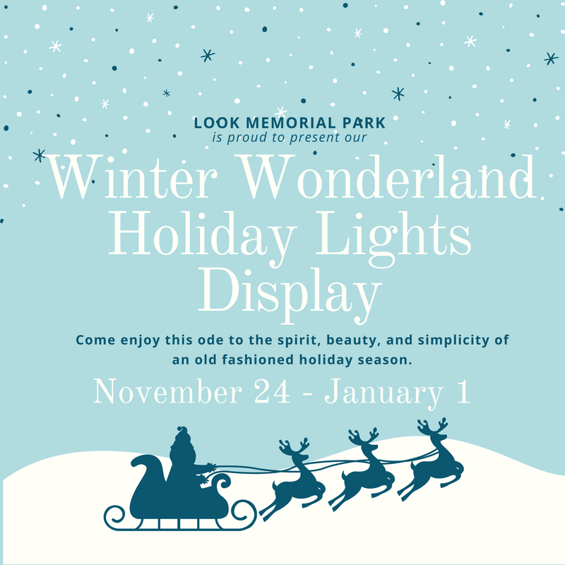 holiday-lights-website-cover-photo