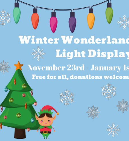 winter-wonderland-light-display-2